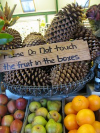 fruit_warning