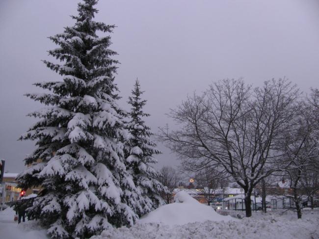 Skellefteaa winter