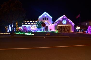New Zealand 2013 219