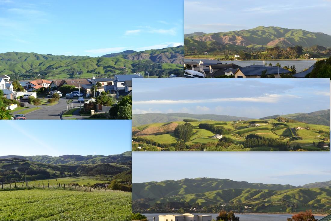 Whitby New Zealand 2013