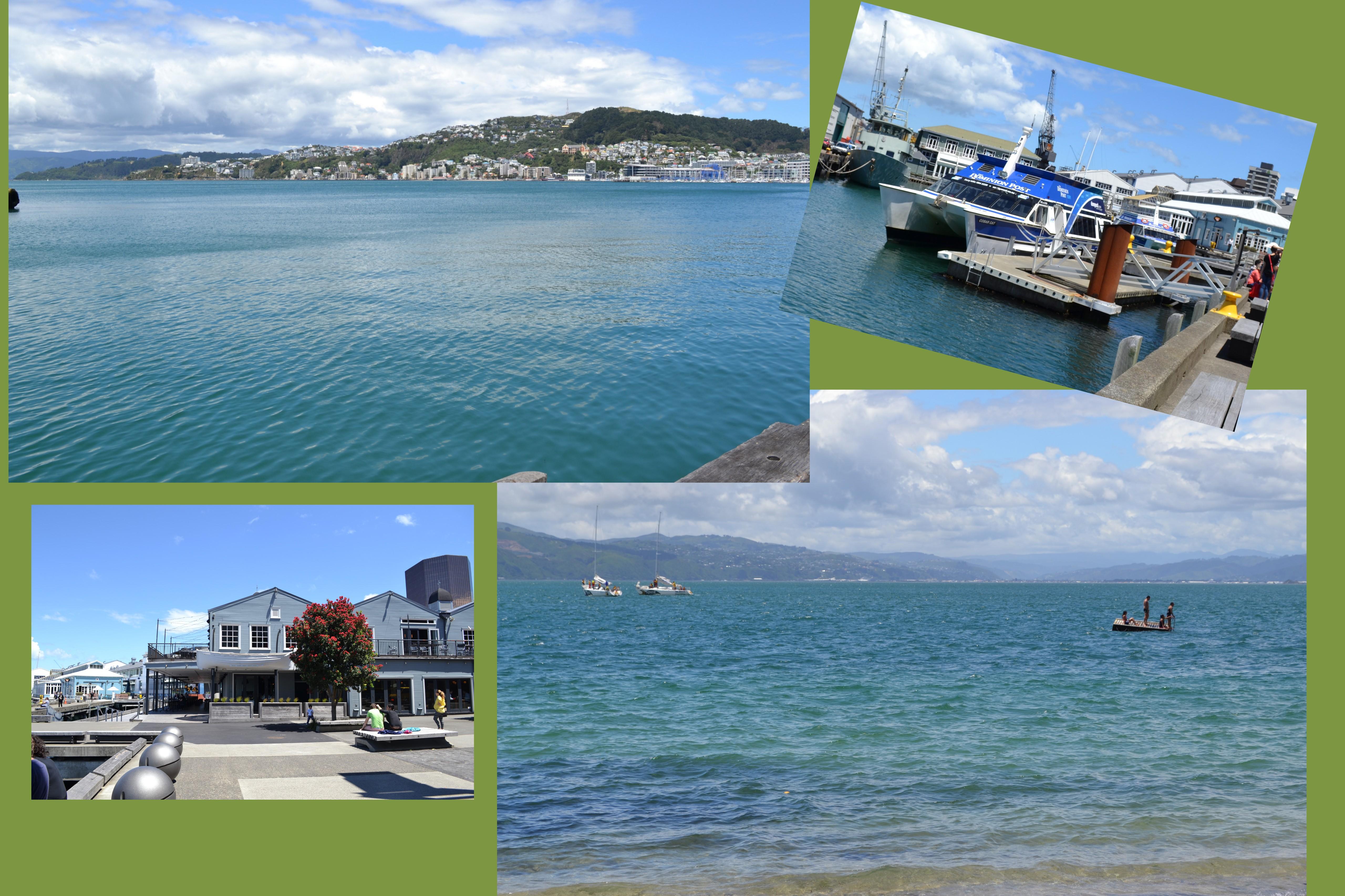 Eastbourne1New Zealand 20136