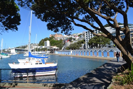 New Zealand 2013 176