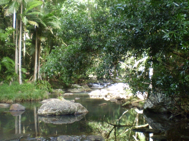 Cool rainforest glades and rock pools