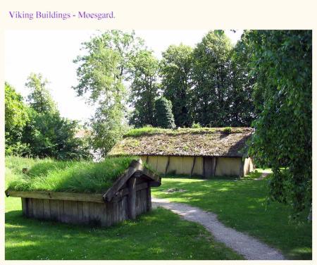 Viking huts