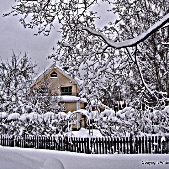 snow in Swedish winter