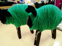 coloured sheep