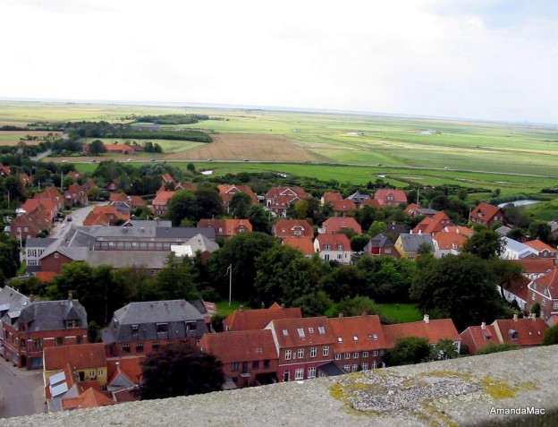 From Tower Ribe Cathedral Denmark