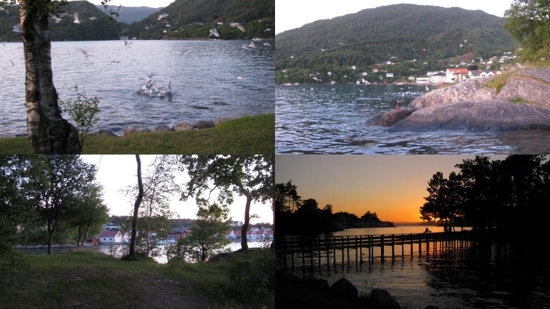 skånevik, Norway