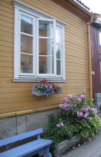 windows in Trondheim