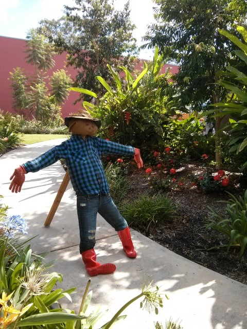 scarecrow at Carseldine markets (Small)