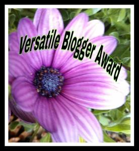versatile blogger3