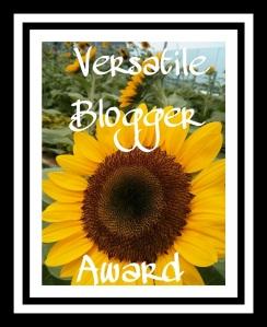 Versatiler blogger2