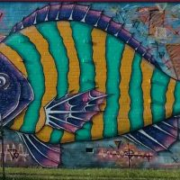Friendly Friday Blog Challenge - Something Fishy