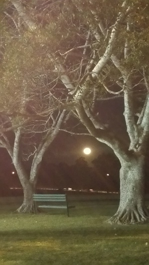 moon frame - Copy