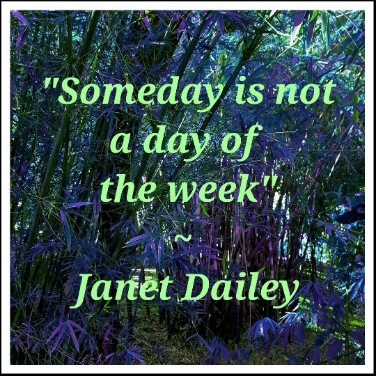 someday is not a day of the week1852628217..jpg