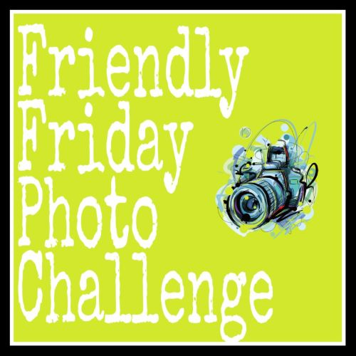 Friendly Friday Photo challenge