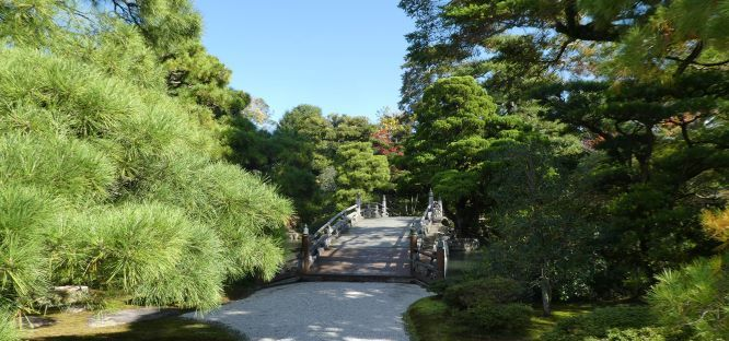 bridge through a garden in japan