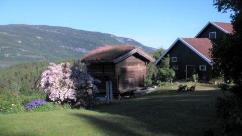 numedal valley norway