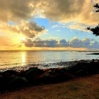 Ways to Improve Life during the Year of Covid