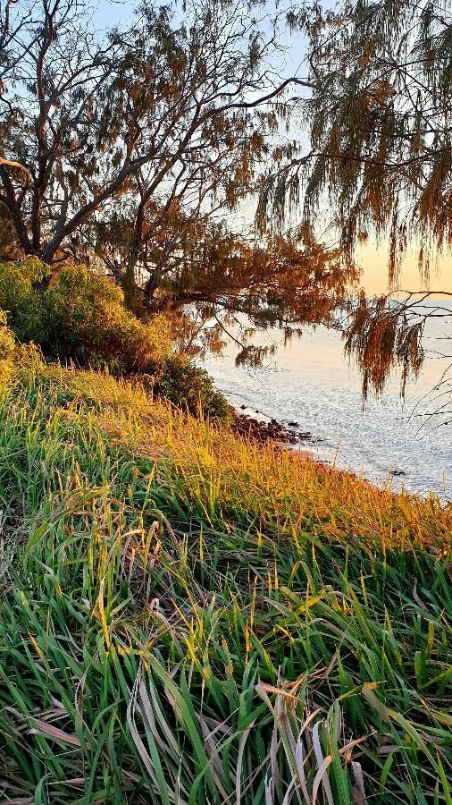 Australian beach cliff sunrise