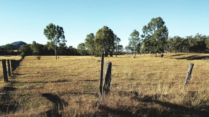 rural australia farm