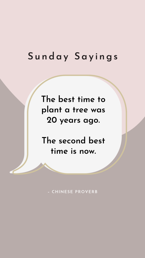 Chines proverb about planting a tree in a voice bubble